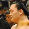 Osaka Sumo Tournament