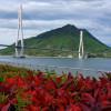 Island Biking Adventures