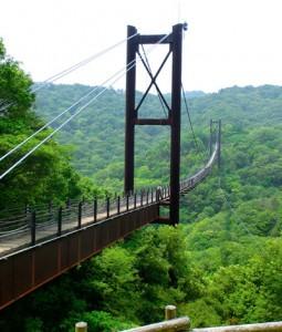 Hoshi no Buranko suspension bridge 1