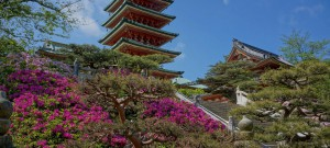 008. Konsanji Temple