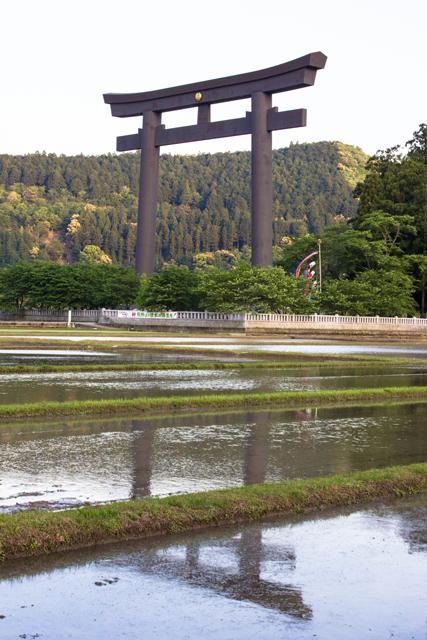 12-hongu-taisha-tori-gate-1